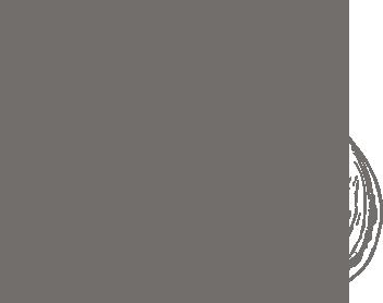 Иллюстрация чеснока